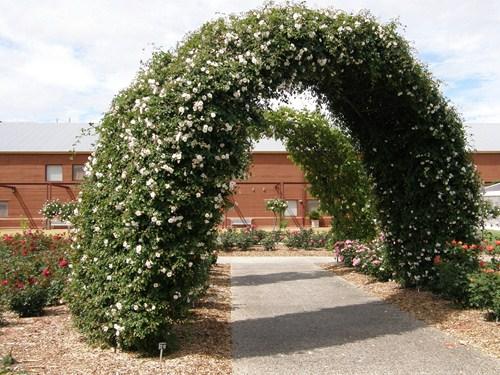 Adelaide Botanic Gardens, Adelaide d'Orleans on nearest arch